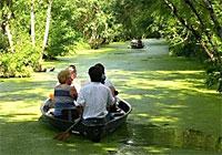 Promenade en barque au coeur de la venise Verte